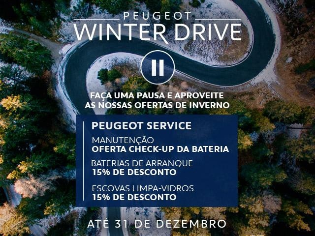 WINTER DRIVE APV